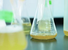 stp-components-laboratories