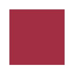 emblema_unss1